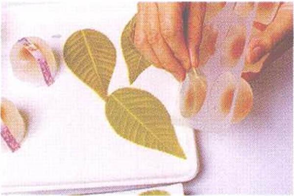 烘焙入门烘焙食谱之水晶御露制作步骤5