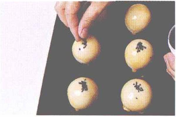 烘焙入门烘焙食谱之蛋黄酥制作步骤9