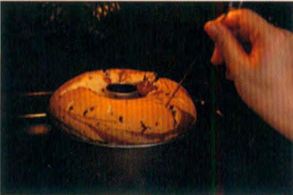 烘焙入门烘焙食谱之大理石蛋糕制作步骤15